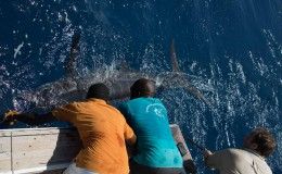 23-deep-sea-marlin-fishing-unreel-watamu-kenya-coast-10.jpg