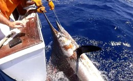 32-deep-sea-marlin-fishing-unreel-watamu-kenya-coast-94.jpg