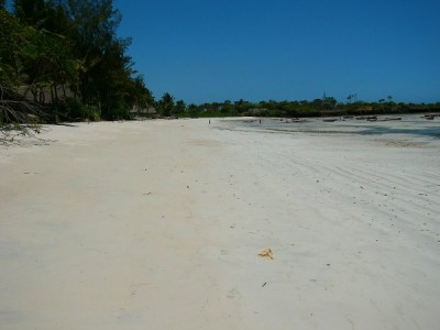Places to visit on the Kenya Coast